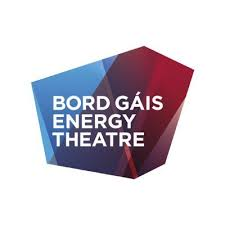 Bord Gais Energy Theatre Security Systems
